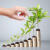 Qué es el value investment y cómo saber si es para ti