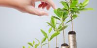 que-es-el-value-investment