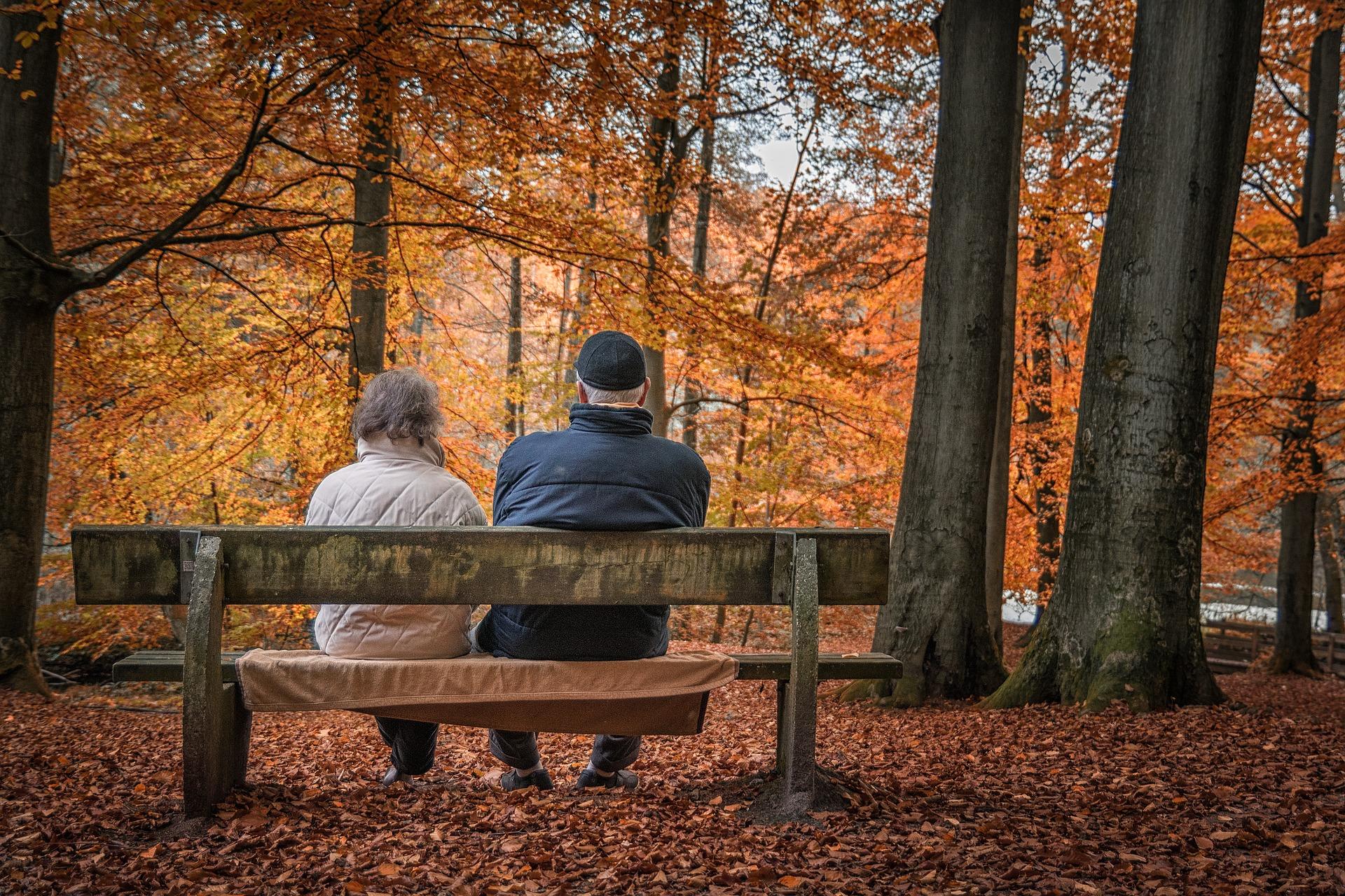 Qué día debe la Seguridad Social ingresarme la pensión