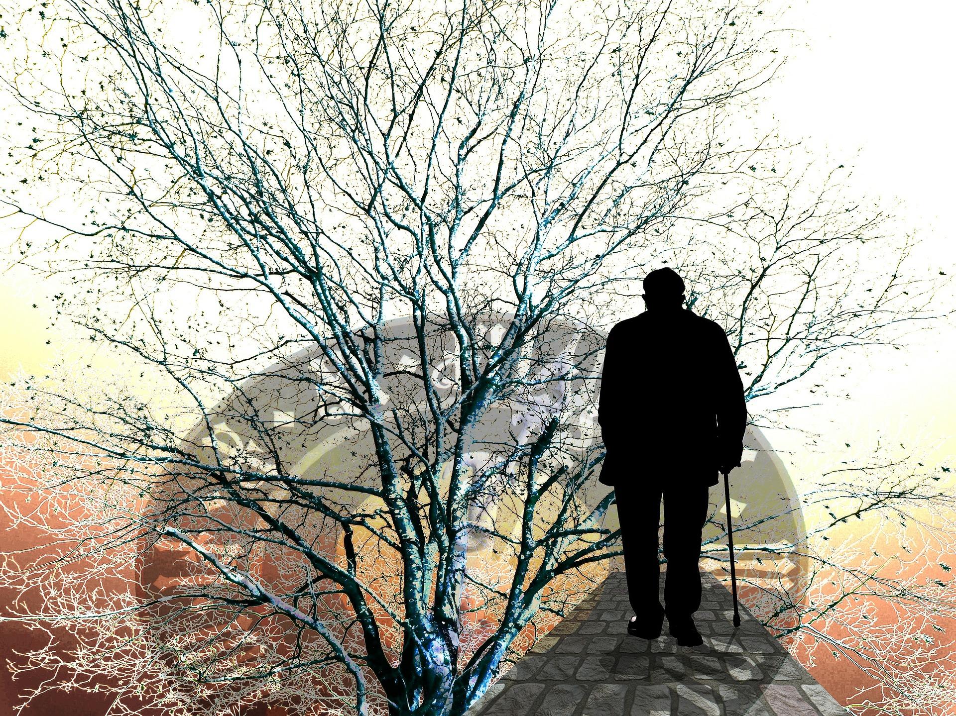 Qué son las cuentas nocionales y cómo afectan a las pensiones